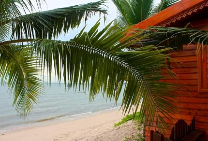 Serene Sands