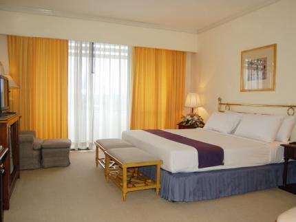 로이 팰리스 호텔
