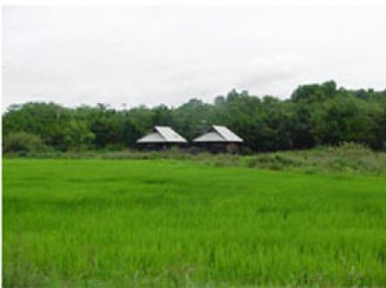 Khao Ko Talay Phu