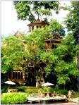 บ้านต้นไม้ปาย รีสอร์ท