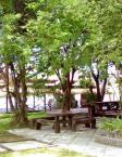 卡森岛度假村