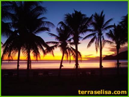 Terra Selisa Dolphin Beach