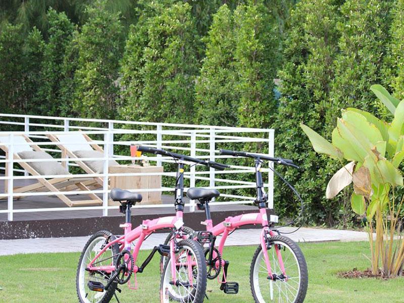 Terrua Main Ten Villa Garden