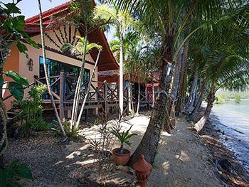 Natures Oasis Resort No.3