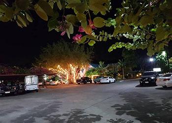 Hotel Kung Pao 2