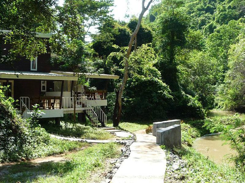The Jungle House Hotel