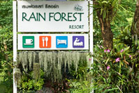 Rain Forest Resort