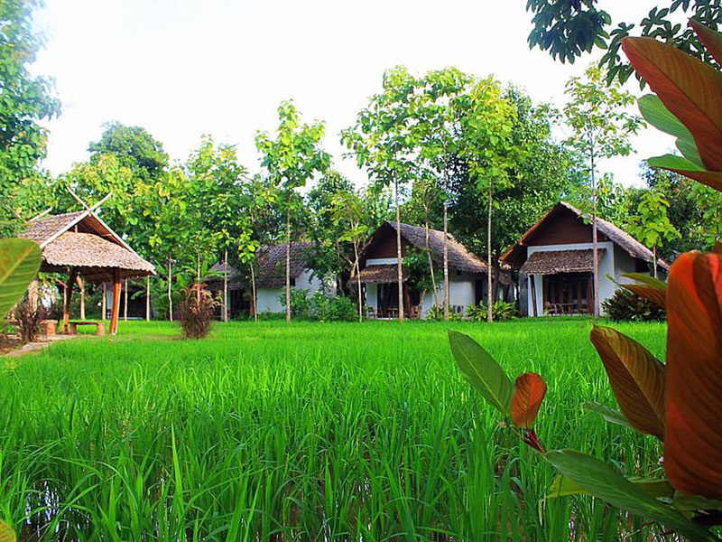 Hotels Nearby Huen Muang Pai Resort